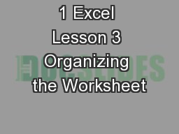 1 Excel Lesson 3 Organizing the Worksheet