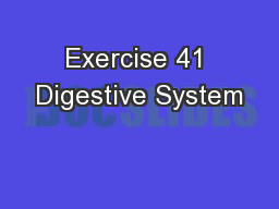 Exercise 41 Digestive System