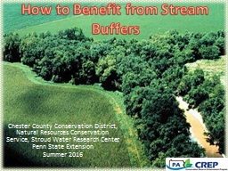How to Benefit from Stream Buffers