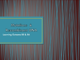 Mutations & Recombinant DNA PowerPoint PPT Presentation