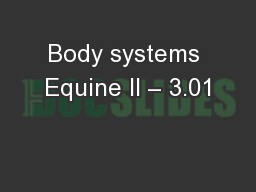 Body systems Equine II � 3.01
