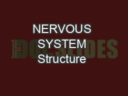 NERVOUS SYSTEM Structure & Function