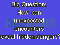 Big Question: How  can unexpected encounters reveal hidden dangers?