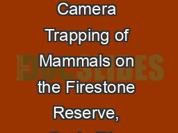� Automated Camera Trapping of Mammals on the Firestone Reserve, Costa Rica