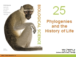 0 Phylogenies  and the History of Life