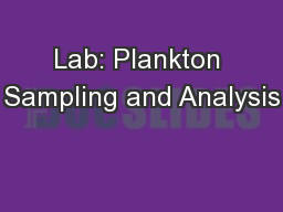 Lab: Plankton Sampling and Analysis