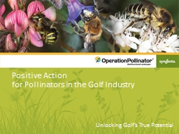 Positive Action  for  Pollinators in the Golf Industry