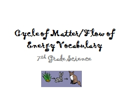 Cycle of Matter/Flow of Energy Vocabulary