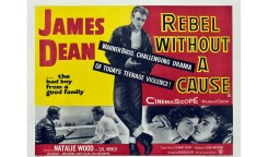Rebel Without A Cause 						Nicholas Ray (1955)