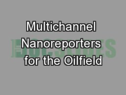 Multichannel Nanoreporters for the Oilfield
