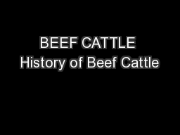 BEEF CATTLE History of Beef Cattle