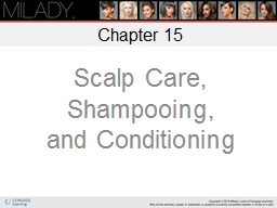 Scalp Care, Shampooing,