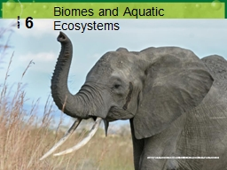 6 Biomes and Aquatic Ecosystems