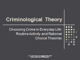 Choosing Crime in Everyday Life: Routine Activity and Rational Choice Theories