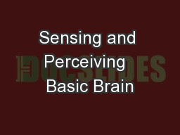 Sensing and Perceiving  Basic Brain