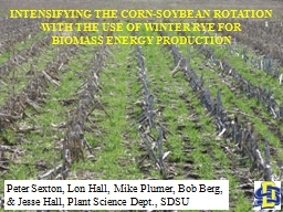 INTENSIFYING THE CORN-SOYBEAN ROTATION WITH THE USE OF WINTER RYE FOR