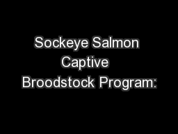 Sockeye Salmon Captive  Broodstock Program: