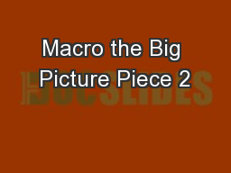 Macro the Big Picture Piece 2