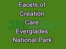 Facets of Creation Care Everglades National Park: