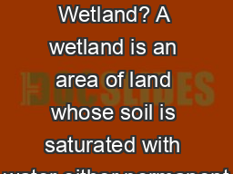 What is a Wetland? A wetland is an area of land whose soil is saturated with water either permanent