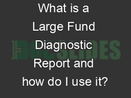 What is a Large Fund Diagnostic Report and how do I use it?