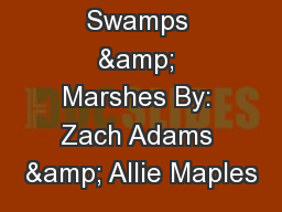 Swamps & Marshes By: Zach Adams & Allie Maples