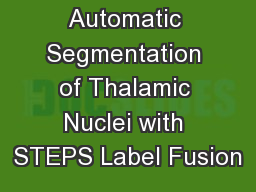 Automatic Segmentation of Thalamic Nuclei with STEPS Label Fusion