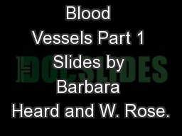 Blood Vessels Part 1 Slides by Barbara Heard and W. Rose.