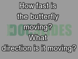 How fast is the butterfly moving? What direction is it moving?