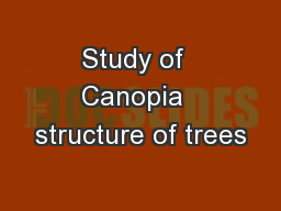 Study of  Canopia  structure of trees PowerPoint PPT Presentation