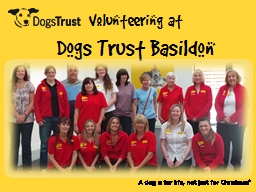 Volunteering at  Dogs Trust Basildon