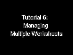 Tutorial 6:  Managing Multiple Worksheets