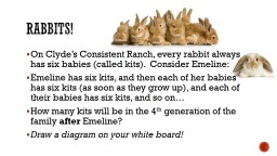 Rabbits! On Clyde�s Consistent Ranch, every rabbit always has six babies (called kits).  Consider