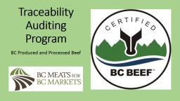 Traceability Auditing Program