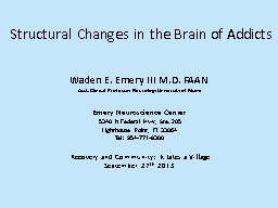 Structural Changes in the Brain of Addicts