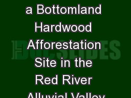 Avian  Use of a Bottomland Hardwood Afforestation Site in the Red River Alluvial Valley