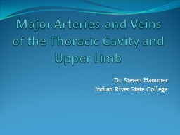 Major Arteries and Veins of the Thoracic Cavity and