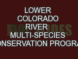 LOWER COLORADO RIVER  MULTI-SPECIES CONSERVATION PROGRAM