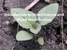 Introduction to Weed  S cience and