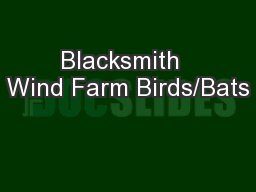 Blacksmith  Wind Farm Birds/Bats