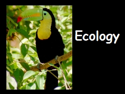 Ecology WATCH Populations Distribution