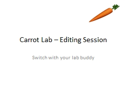 Carrot Lab – Editing Session