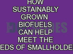 HOW SUSTAINABLY GROWN  BIOFUELS CAN HELP MEET THE NEEDS OF SMALLHOLDERS