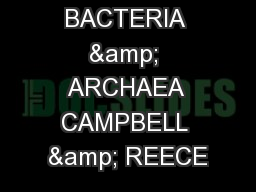 BACTERIA & ARCHAEA CAMPBELL & REECE PowerPoint PPT Presentation