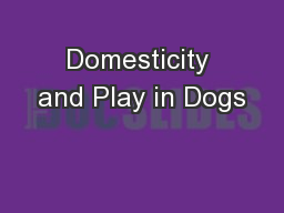 Domesticity and Play in Dogs
