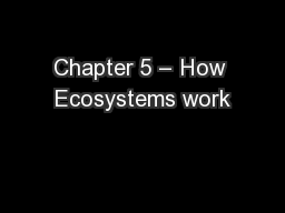 Chapter 5 – How Ecosystems work