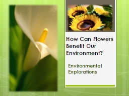 How Can Flowers Benefit