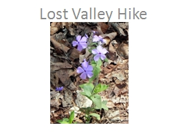 Lost Valley Hike Students will hike about 1 ½