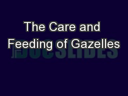 The Care and Feeding of Gazelles