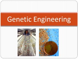 Genetic Engineering What is the difference between